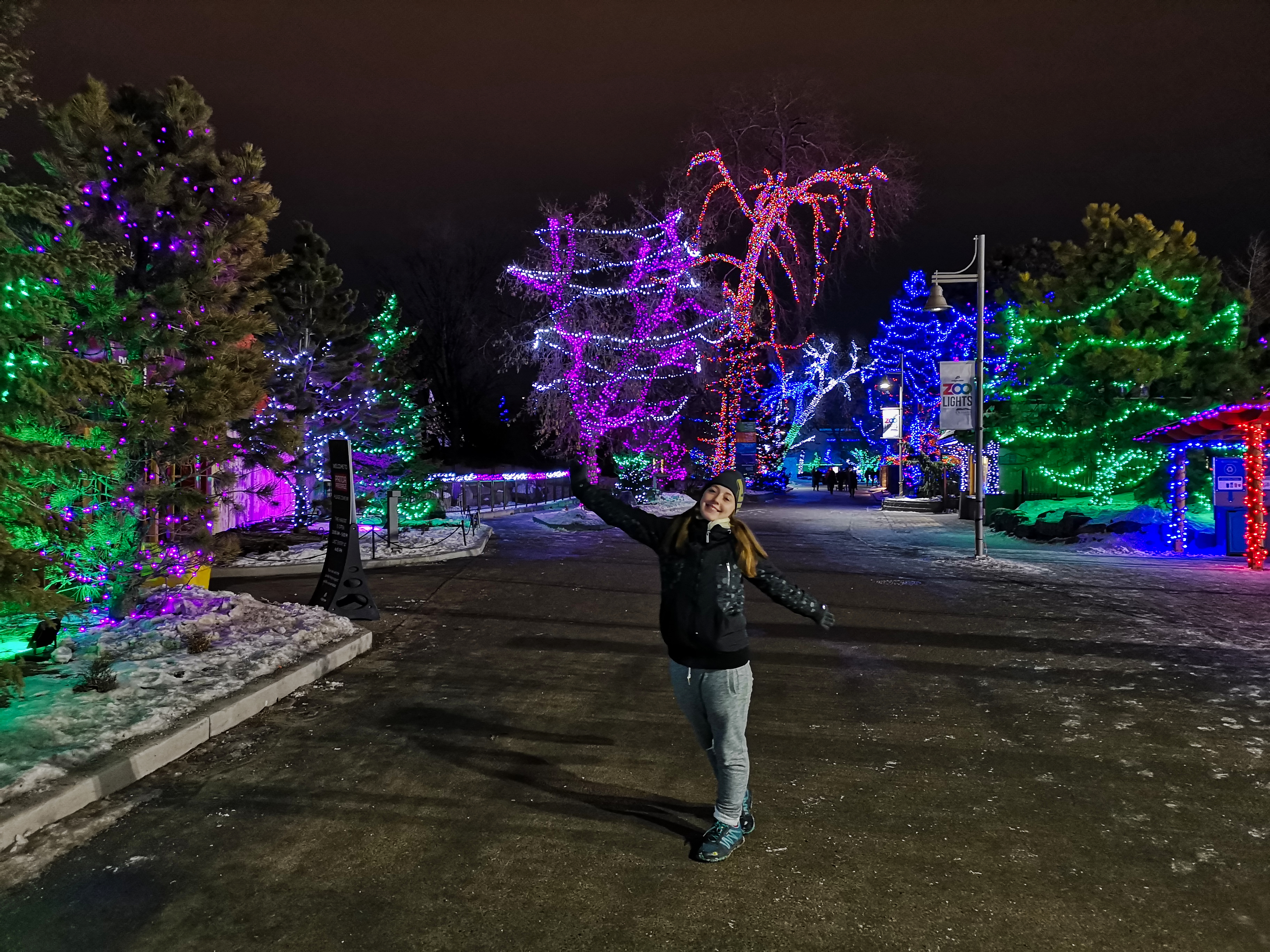 Zoolights in Calgary
