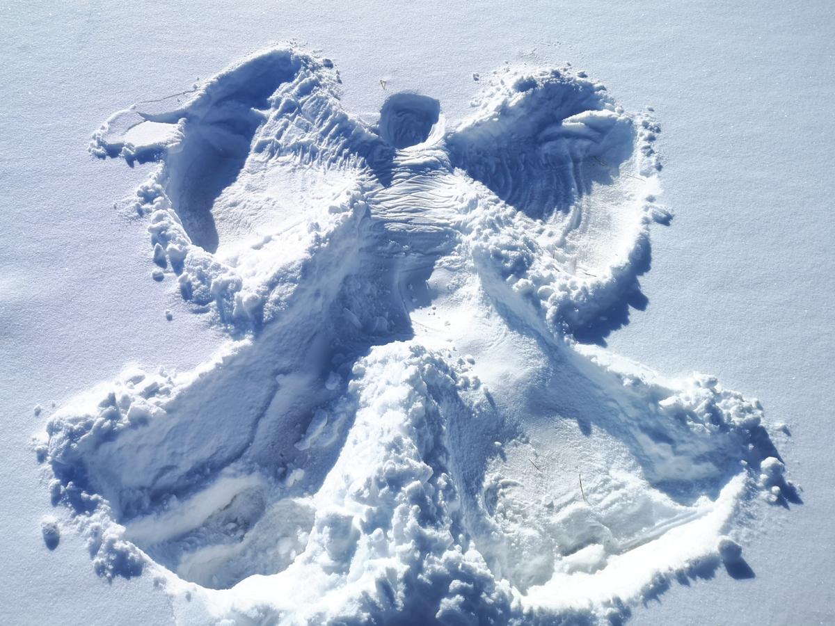Snow Angel In Calgary