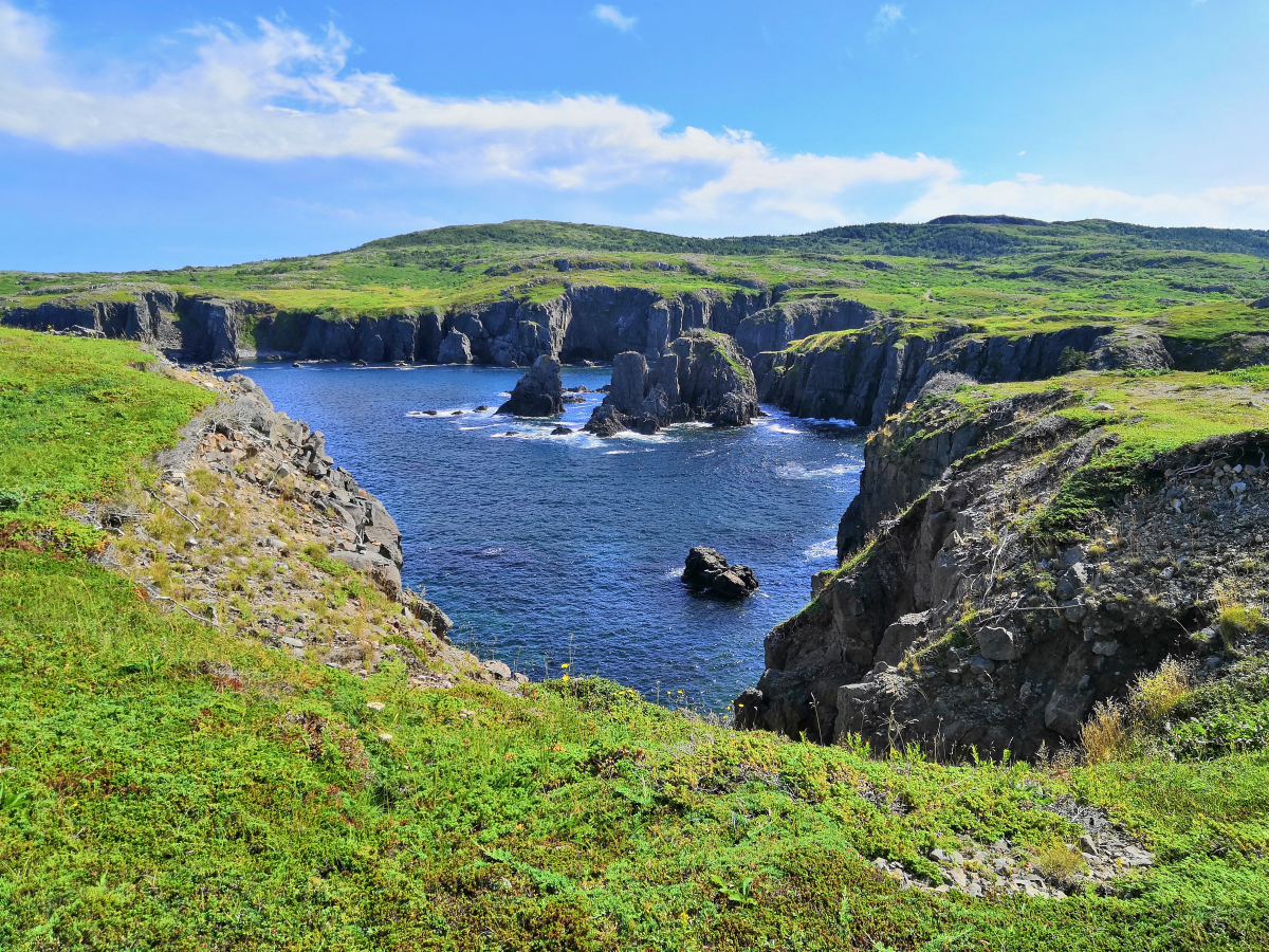 One of the best Workaway experiences I've had - in Newfoundland