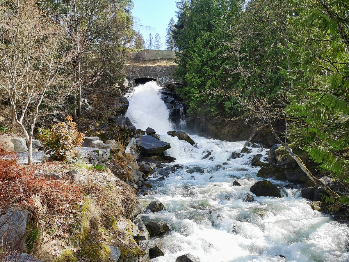 Things to see in Nelson BC - Cottonwood Falls Park