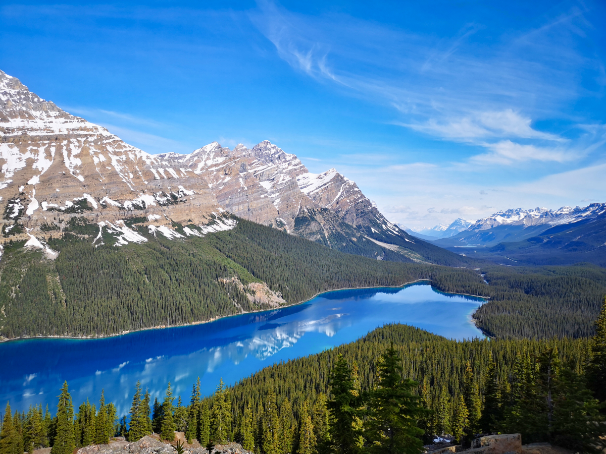 Peyto Lake - my favourite stop on the Banff to Jasper drive