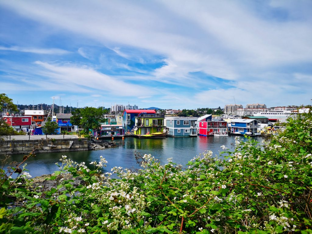 Victoria Harbour, house boats
