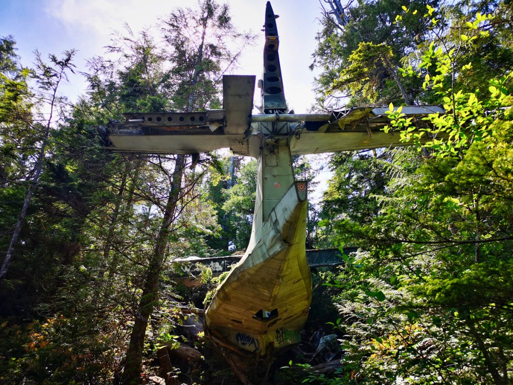 Hike to the crashed bomber plane in Tofino