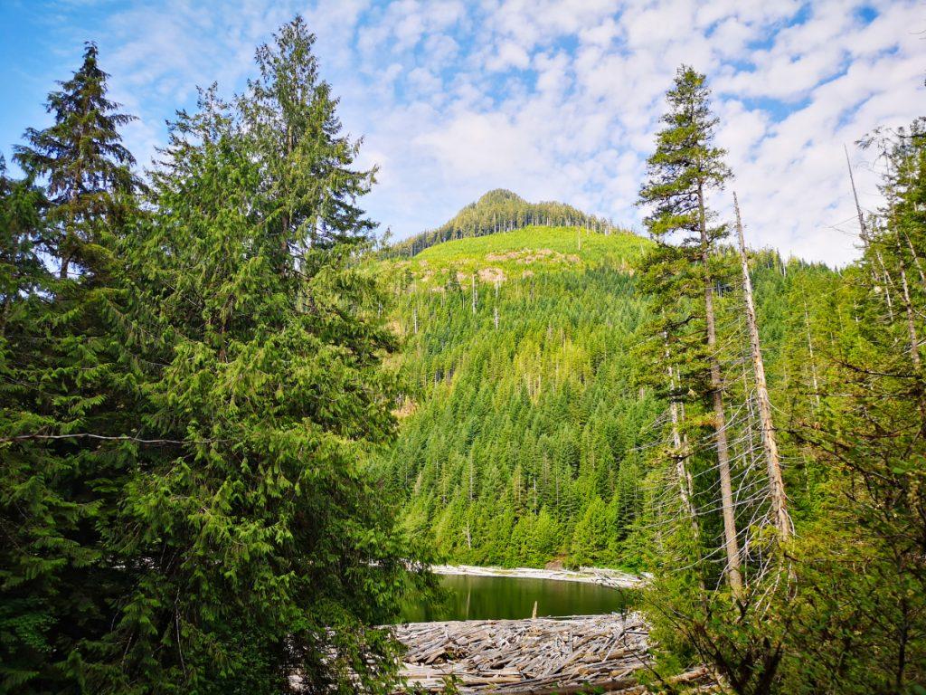 Viewpoint Little Huson Cave Park