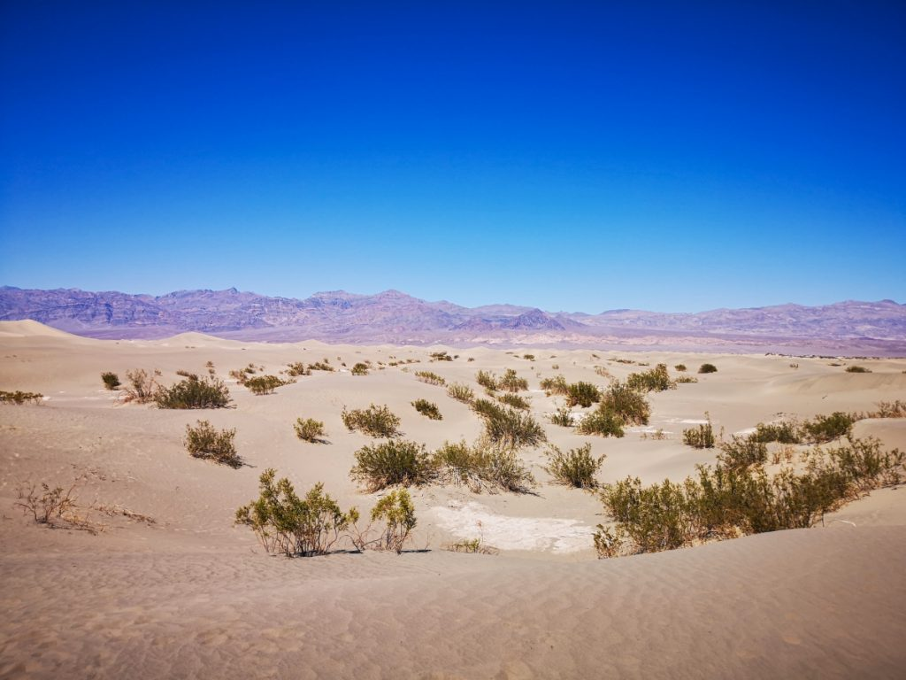 Mesquite Flat Sand Dunes, Death Valley