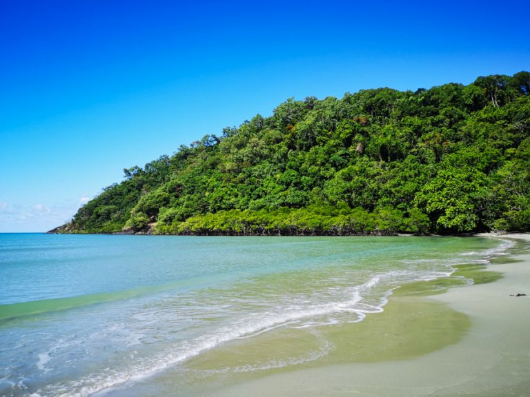 Read more about the article Cairns to Cape Tribulation – a Daintree Rainforest day trip