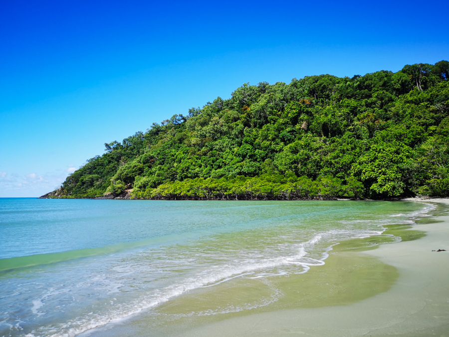 Cairns to Cape Tribulation – a Daintree Rainforest day trip